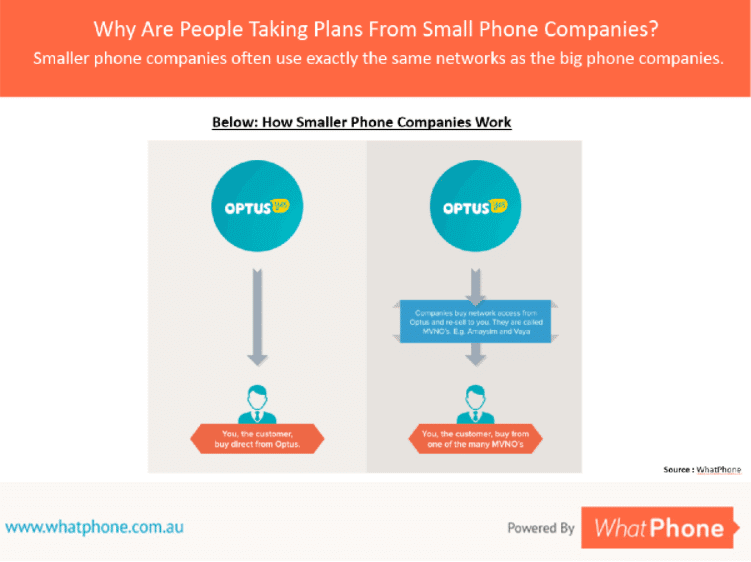 Smaller phone companies resell the networks that big companies built.