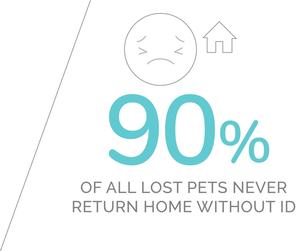 Majority of lost pets never make it back to their owners.